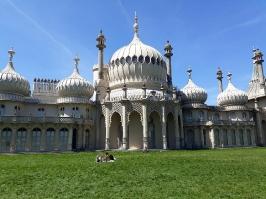 Brighton_56