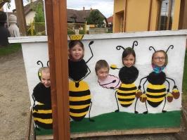 včely_41