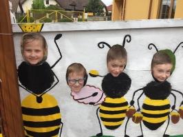 včely_43