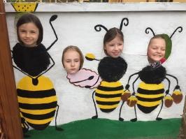 včely_44