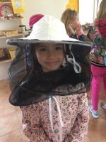 včely_6